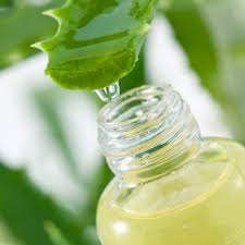 aloe is helpful for pet skin issues