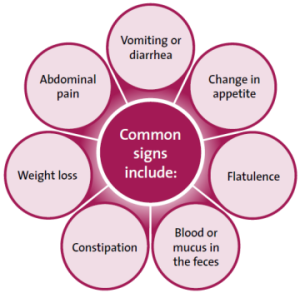 gi-disorders-common-signs
