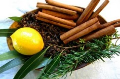lemon, cinnamon sticks, and herbs